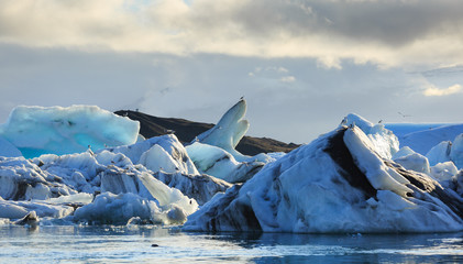 Fotomurales - Icebergs and seaguls in the Jokulsarlon lagoon on Iceland.