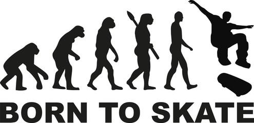 Born to skate evolution