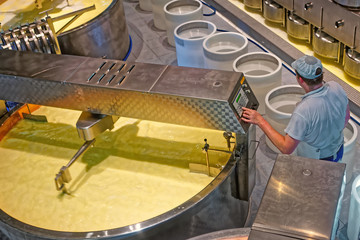 Production of well-known Gruyere cheese