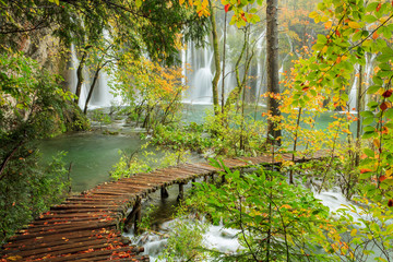 Wall Murals Road in forest Wood path in the Plitvice national park in autumn