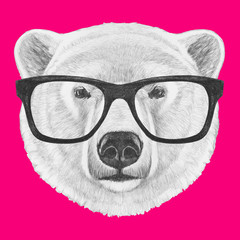 Portrait of Polar Bear with glasses. Hand drawn illustration.