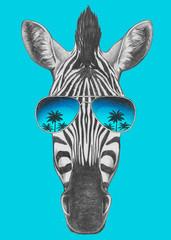 Portrait of Zebra with mirror sunglasses. Hand drawn illustration.