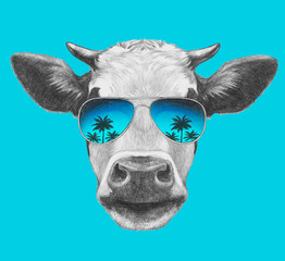 Portrait of Cow with mirror sunglasses. Hand drawn illustration.