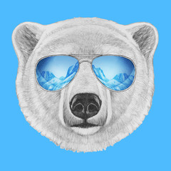 Portrait of Polar Bear with mirror sunglasses. Hand drawn illustration.