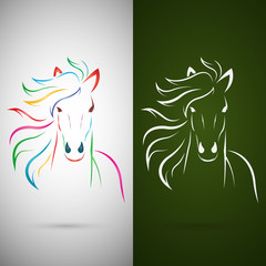 Vector image of an horse design on white background and green ba