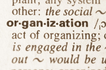 Dictionary definition of word organization