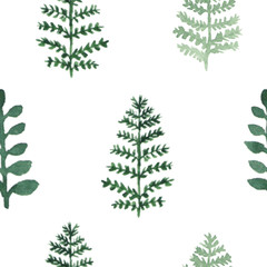 Seamless pattern with watercolor hand draw fern and leaves