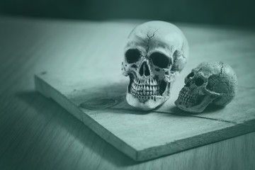 Human skulls on wooden table. Concept enduring love..