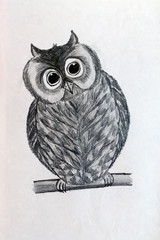 picture of an owl