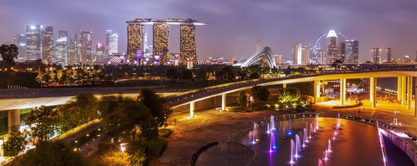 Foto op Plexiglas Singapore Singapore skyline at night