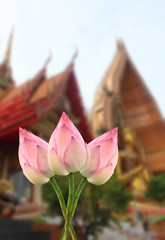 lotus for Buddhist religious ceremony