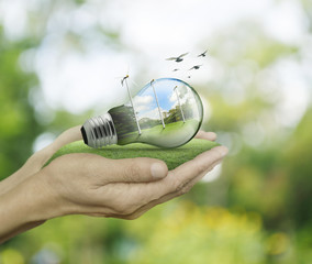 Light bulb with wind turbines and forest inside in hands on gree