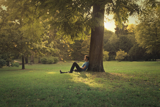 Man sitting under a pine tree