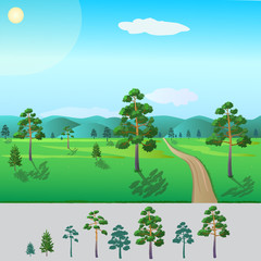-  ready trees pine/ pine trees of different sizes to work for your picture about the nature of the forest