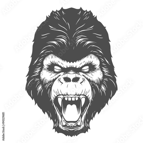 Angry gorilla head drawing