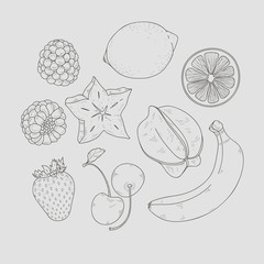 Different fruits set isolated . Vector illustration