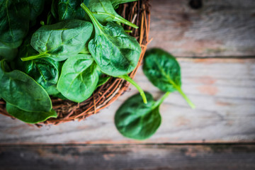 Fresh spinach on rustic wooden background