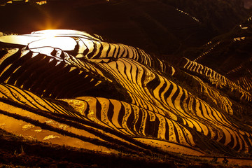Reflection of the morning sun on the terraced rice fields of Longji, Guangxi Province, China.