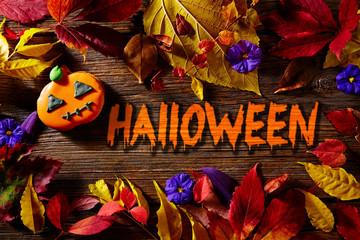 Halloween written word pumpkin fall background