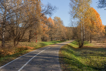 The road and the decorative bridge in the autumn park