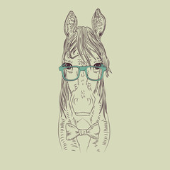 Hipster horse vector illustration.