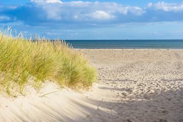 Fototapeta Zugang durch die Dünen zum Ostsee Strand