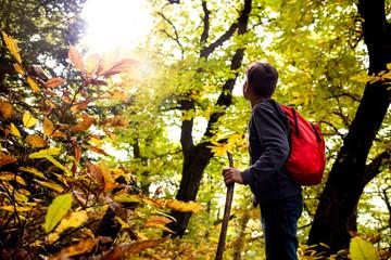 boy walking alone in the woods