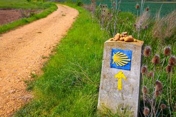 The Way of Saint James shell sign and arrow