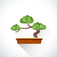 vector flat bonsai illustration icon.