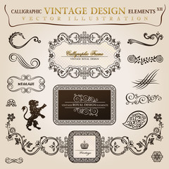 Calligraphic elements vintage heraldic. Vector frame decor