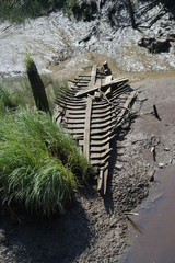 remains of a rotting old boat