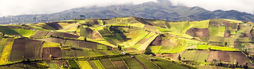 Ecuador Agriculture Panorama