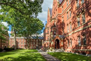 The Harvard University