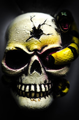 fearful skull for Halloween