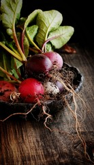 bunch of radishes lies on plate, wooden background, selective focus