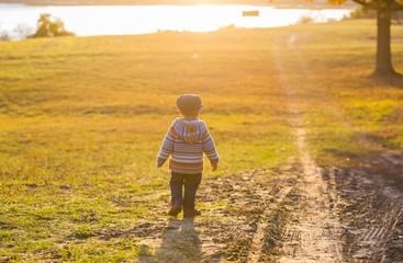 Little boy walking in autumnal landscape