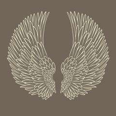 vector pair of angel wings in contour