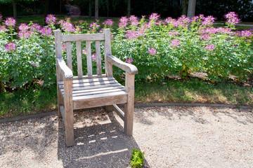 Tranquil garden