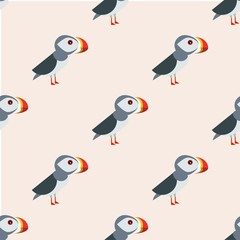 Bird pattern vector illustration, iceland concept, colorful background