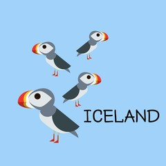 Iceland concept. Puffin sea bird line art icon. Birdwatching popular bird collection. Flat design northern puffin colored in bright vivid colors. Simple and cute style.