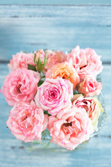 Beautiful fresh pink roses on a blue background.