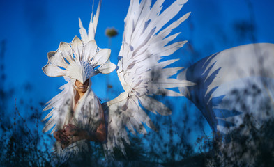 Young girl standing outside in the field in the high grass with blue sky, wearing a costume, a great white mask that covers her face, big white spread wings, a