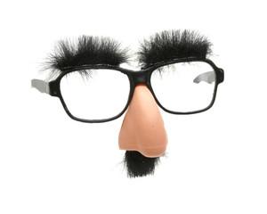 Faschingsnase mit Brille