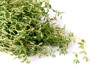 thyme isolated on white background chabrets