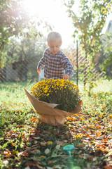 Happy little boy with autumn flowers in the garden