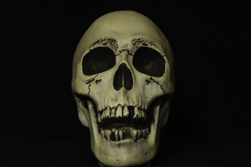 scary human looking skull on black background