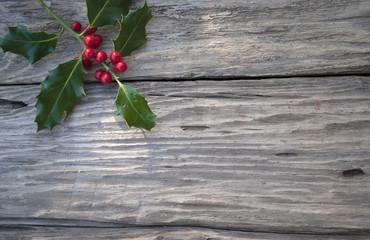 Stechpalme, Ilex Zweig mit roten Beeren auf altem Treibholz / Holz Brett