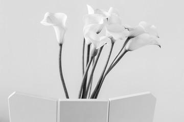 Black and white calla lilies image