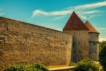 Wall Mural - The fortification, old stone wall of Vanalinn, Old Tallin city, Europe