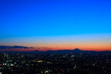 シルエットで浮かび上がる夕暮れ時の富士山
